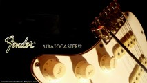 Guitar Wallpaper Transparant Fender Stratocaster Electric Guitar