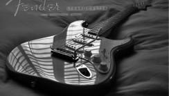 Fender Stratocaster Best Guitar Photo