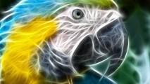 Free Art 3D Animal Image Wallpaper Index For Dekstop