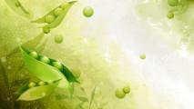 Vector Art Flowers 3D Wallpapers Background For Your PC Dekstop