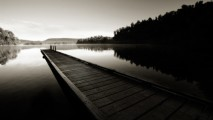 Black And White Nature Photo Picture HD Wallpaper For Your Desktop