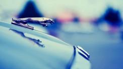 Jaguar Logo 1080p HD Wallpaper Car   HD Wallpapers Source