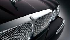 Amazing Jaguar Logo Cars Wallpaper Picture Image Free Download