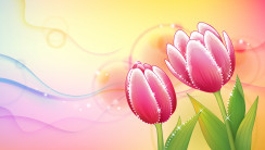Beautiful Abstract Flowers Design Wallpapers HD Widescreen Desktop
