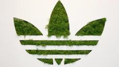 Fantastic Adidas Green Logo And White Backgoround HD Wallpaper Desktop