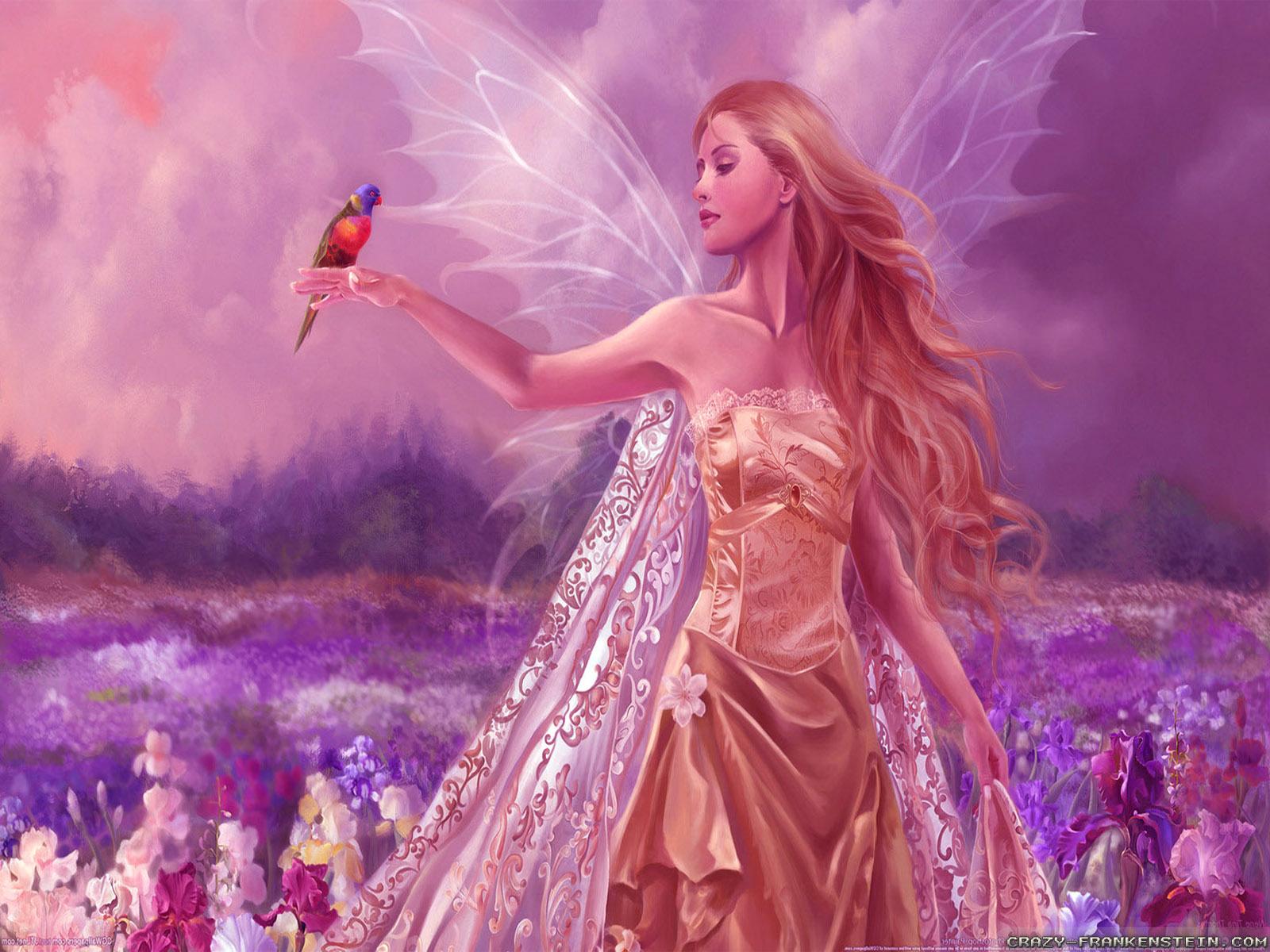 beautiful angel and bird animal hd wallpaper widescreen