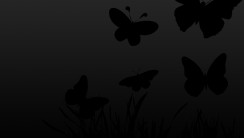 Awesome Black Butterfly Wallpaper HD Widescreen For Your PC Computer