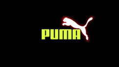 Puma With Yellow Font And White Logo HD Wallpaper Image Picture