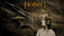 The Hobbit Desolation Of Smaug HD Wallpaper For Your PC Desktop