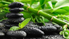 Green Bamboo and Black Stones HD Wallpaper