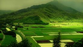 Green Mountain Nature HD Wallpaper
