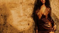 Megan Fox HD Wallpaper